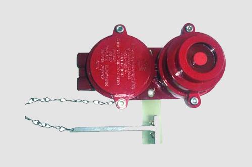 Flameproof Control Gears  Weatherproof Control Gears
